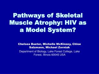 Pathways of Skeletal Muscle Atrophy: HIV as a Model System?