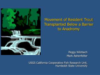 Movement of Resident Trout Transplanted Below a Barrier to Anadromy
