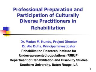 Professional Preparation and Participation of Culturally Diverse Practitioners in Rehabilitation