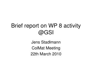 Brief report on WP 8 activity @GSI