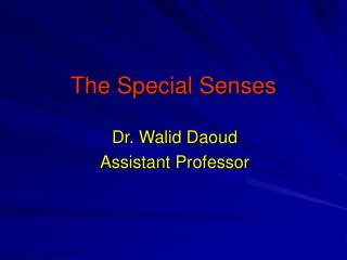 PPT - Chapter 8 Special Senses: Hearing & Equilibrium PowerPoint ...