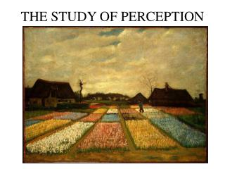 THE STUDY OF PERCEPTION