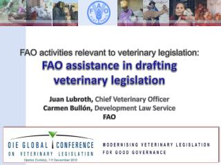 FAO activities relevant to veterinary legislation:  FAO  assistance in drafting