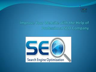 Professional SEO Company offer SEO Services