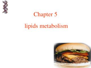 Chapter 5   lipids metabolism