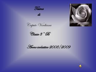 Anno scolastico 2008/2009