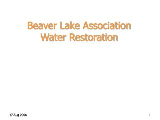 Beaver Lake Association Water Restoration