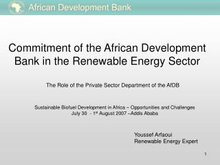 Commitment of the African Development Bank in the Renewable Energy Sector