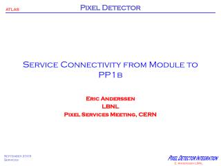 Service Connectivity from Module to PP1b