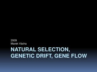 Natural selection, genetic drift, gene  flow