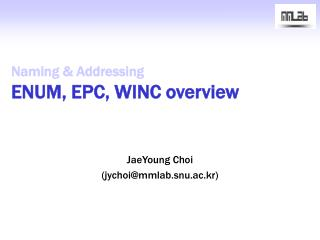 Naming & Addressing ENUM, EPC, WINC overview