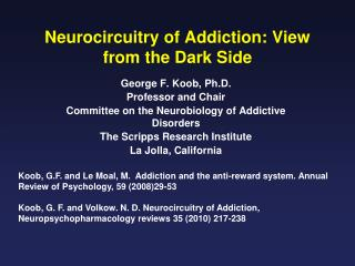 Neurocircuitry of Addiction: View from the Dark Side