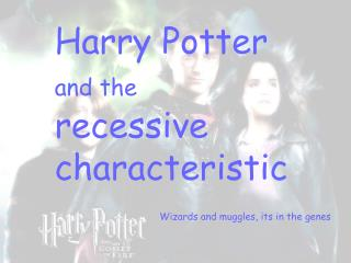 Harry Potter  and the  recessive characteristic
