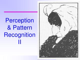 Perception & Pattern Recognition II
