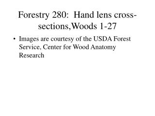 Forestry 280:  Hand lens cross-sections,Woods 1-27