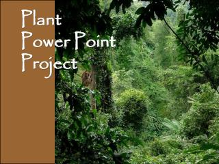 Plant  Power Point  Project