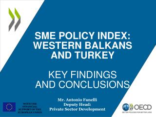 SME POLICY INDEX: WESTERN BALKANS AND TURKEY KEY FINDINGS  AND CONCLUSIONS