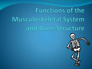 Functions of the Musculoskeletal System and Bone Structure
