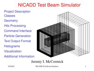 NICADD Test Beam Simulator