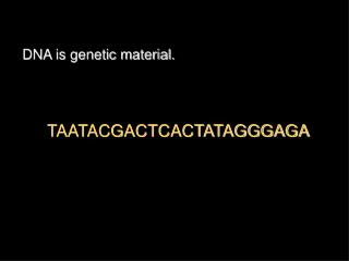 DNA is genetic material.