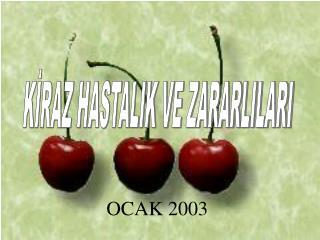 OCAK 2003