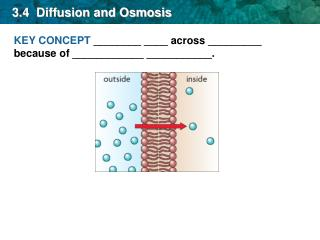 3.4  Diffusion and Osmosis