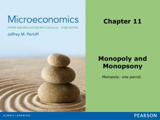 Chapter 11 Monopoly and Monopsony