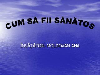 ÎNVĂŢĂTOR - MOLDOVAN ANA