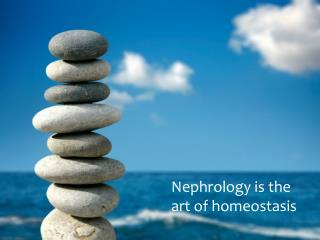 Nephrology is the art of homeostasis