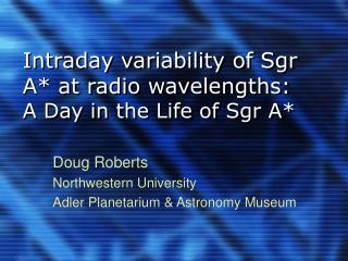 Intraday variability of Sgr A* at radio wavelengths: A Day in the Life of Sgr A*