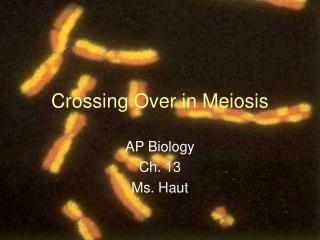 Crossing Over in Meiosis