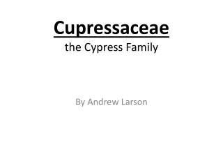 Cupressaceae the Cypress Family