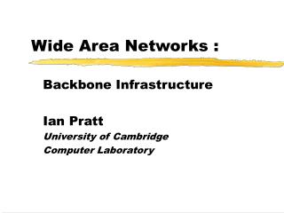 Wide Area  Network s :