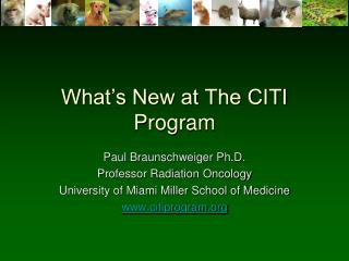 What's New at The CITI Program