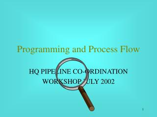Programming and Process Flow