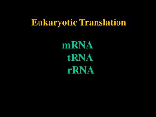 Eukaryotic Translation