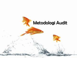 Metodologi  Audit