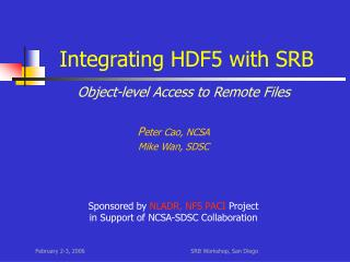 Integrating HDF5 with SRB