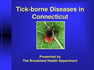 Tick-borne Diseases in Connecticut
