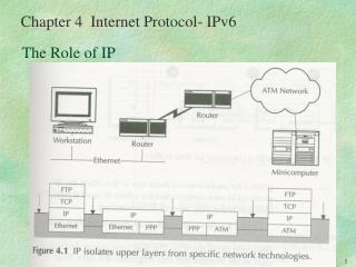 The Role of IP
