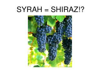 SYRAH = SHIRAZ!?