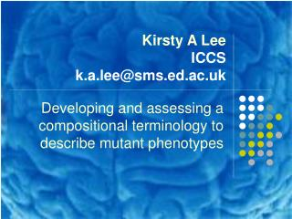 Kirsty A Lee ICCS  k.a.lee@sms.ed.ac.uk