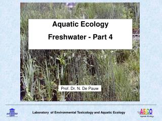 Aquatic Ecology Freshwater - Part 4