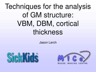 Techniques for the analysis of GM structure:  VBM, DBM, cortical thickness
