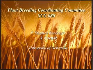 Plant Breeding Coordinating Committee SCC-080