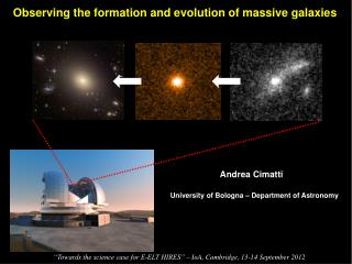 Observing the formation and evolution of massive galaxies