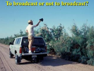 To broadcast or not to broadcast?
