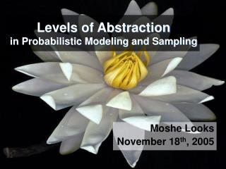 Levels of Abstraction in Probabilistic Modeling and Sampling