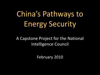 China's Pathways to Energy Security