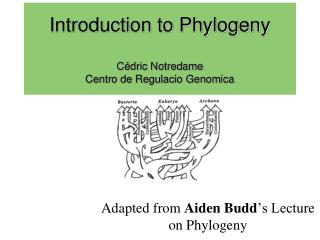 Introduction to Phylogeny Cédric Notredame Centro de Regulacio Genomica